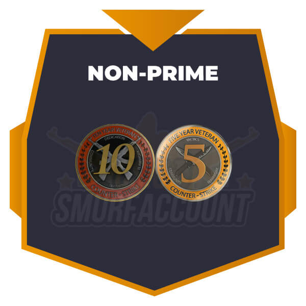 Fresh Non-Prime | 5 & 10 Year Veteran Coin [Instant Delivery]